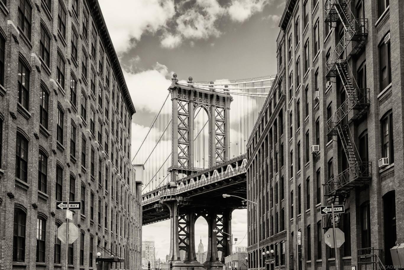 jocao, brooklyn, new york